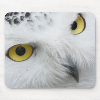 Snowy White Owl with Piercing Eyes Mouse Pad