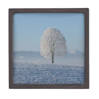 Snowy White Tree in a Snowcovered Field Giftbox Keepsake Box