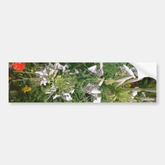 Snowy White Wild Flowers by JanLynn Bumper Sticker