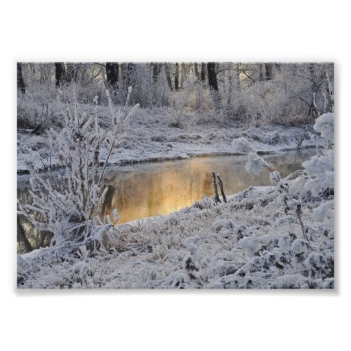 Snowy white winter landscape with light reflect poster