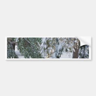Snowy winter bumper sticker