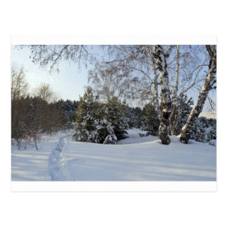 Snowy Winter Day Postcard
