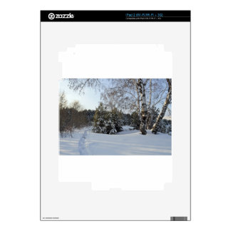 Snowy Winter Day Decals For The iPad 2