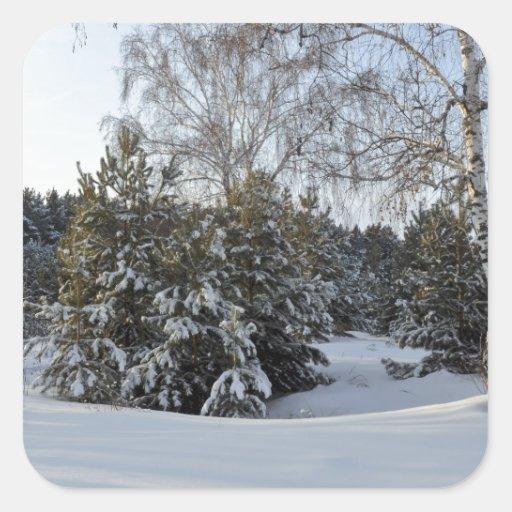 Snowy Winter Day Square Sticker
