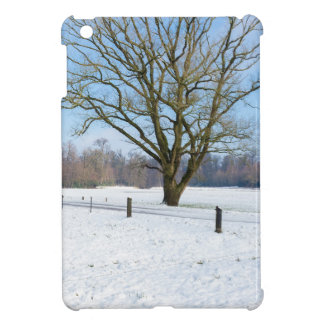 Snowy winter landscape with bare tree and blue sky case for the iPad mini