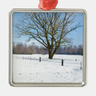 Snowy winter landscape with bare tree and blue sky metal ornament