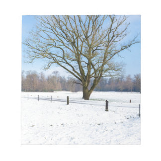 Snowy winter landscape with bare tree and blue sky notepad