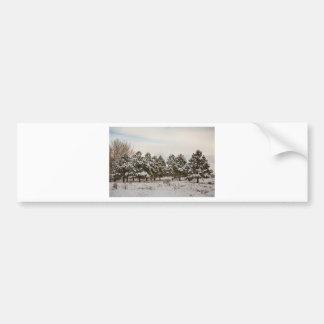 Snowy Winter Pine Trees Bumper Sticker