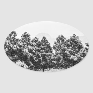 Snowy Winter Pine Trees In Black and White Oval Sticker