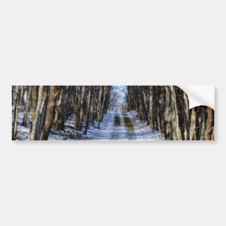 Snowy Winter Road Bumper Sticker