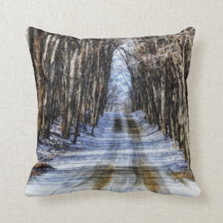 Snowy Winter Road Pillows