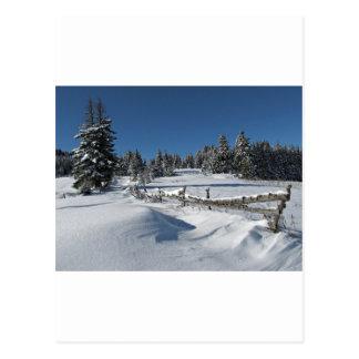 Snowy Winter Scene Postcard