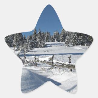 Snowy Winter Scene Star Sticker