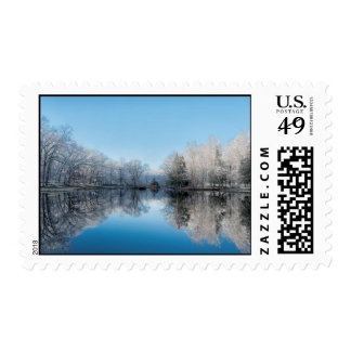 Snowy Winter Tree Lake Reflections Postage Stamp