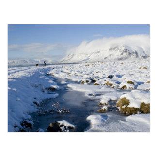 Snowy Winterland Postcards