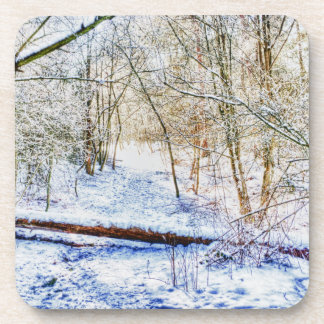 Snowy Woodland Path Coaster