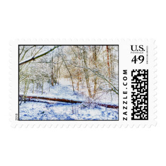 Snowy Woodland Path Postage