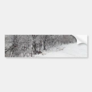 Snowy Woods Bumper Sticker