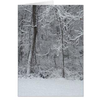 Snowy Woods Christmas Card 5x7