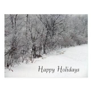 Snowy Woods Christmas Holiday Postcard