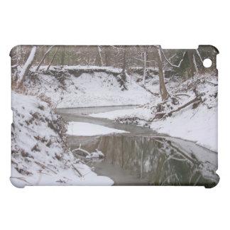 Snowy Woods photo iPad case