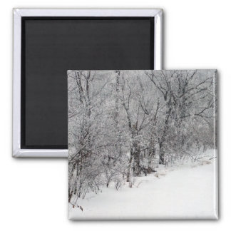 Snowy Woods Square Magnet