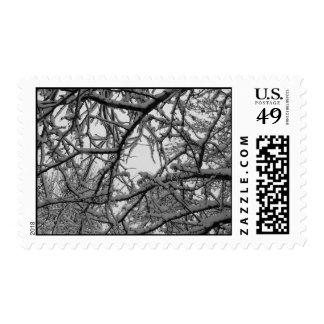 Snowy World Stamp