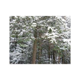 Snowy Xmas Trees in a Winter Wonderland Forest Stretched Canvas Print