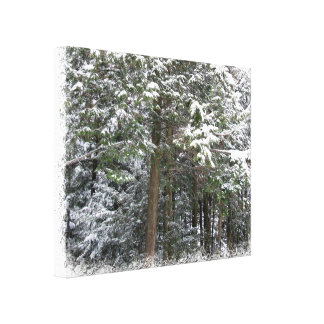Snowy Xmas Trees in a Winter Wonderland Forest Gallery Wrap Canvas