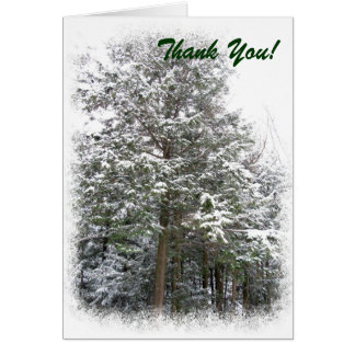 Snowy Xmas Trees in a Winter Wonderland Forest Card