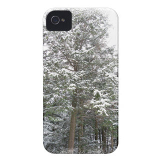Snowy Xmas Trees in a Winter Wonderland Forest iPhone 4 Cover