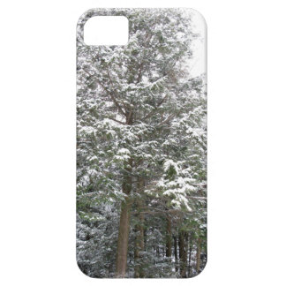 Snowy Xmas Trees in a Winter Wonderland Forest iPhone SE/5/5s Case