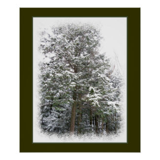 Snowy Xmas Trees in a Winter Wonderland Forest Print