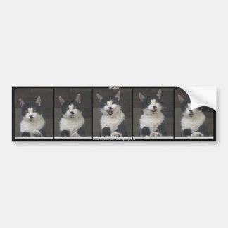 SNUFFLES  - Fun Black & White Cat Car Bumper Sticker