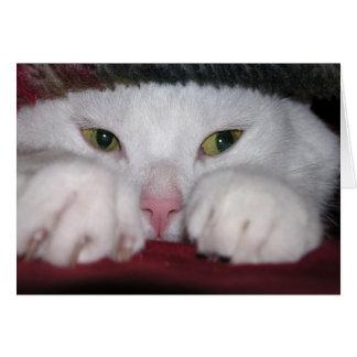 Snug As a Bug Card