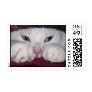 Snug As a Bug Postage Stamps