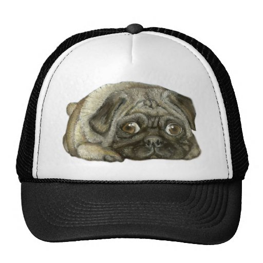 Snug as a pug hats