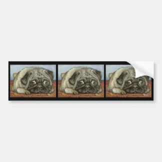 Snug pug car bumper sticker