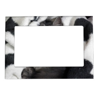 Snuggle Grey Cat Magnetic Picture Frame