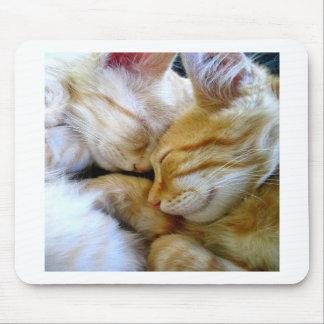 Snuggle Kittens Mousepad