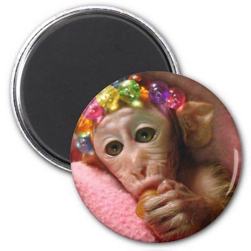 Snuggle Monkey Magnets