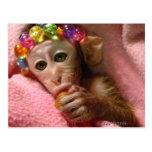 Snuggle Monkey Post Cards