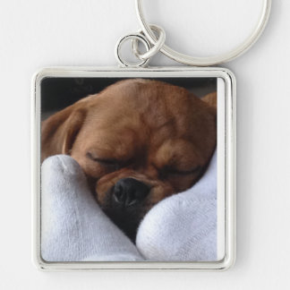Snuggle Puggle Llavero Cuadrado Plateado
