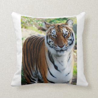 Snuggle Up Tiger Pillow