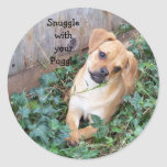 Snuggle w/ur Puggle Sticker