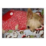 Snuggled adentro para el navidad felicitacion