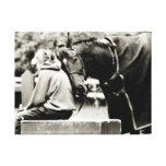 Snuggles del caballo lona envuelta para galerías