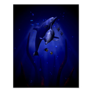 Snuggling Dolphins Poster