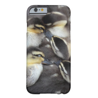 Snuggling ducklings barely there iPhone 6 case