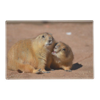 Snuggling Prairie Dogs Laminated Place Mat